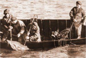povestea pescuitului